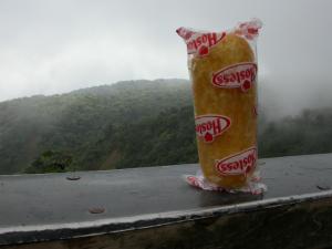Twinkie_2008