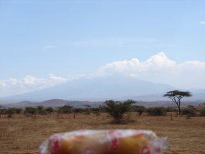 Twinkie_2009_Africa
