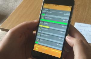 A screen shot of the Bilancio app's budget overview screen.