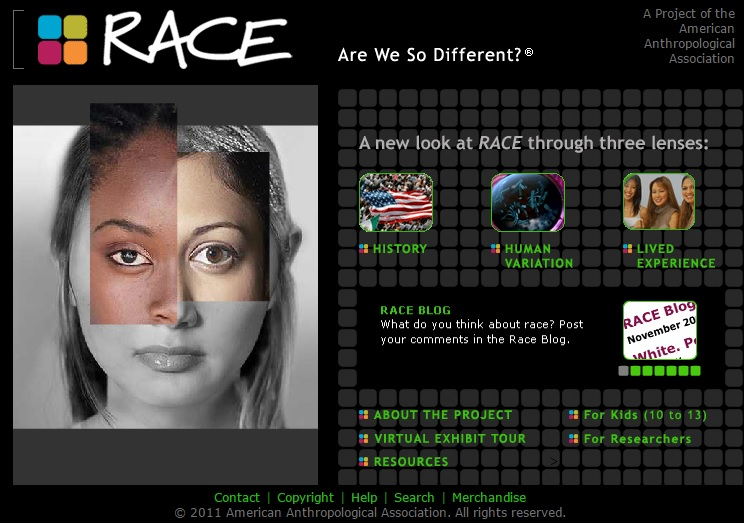 Race--Are We So Different