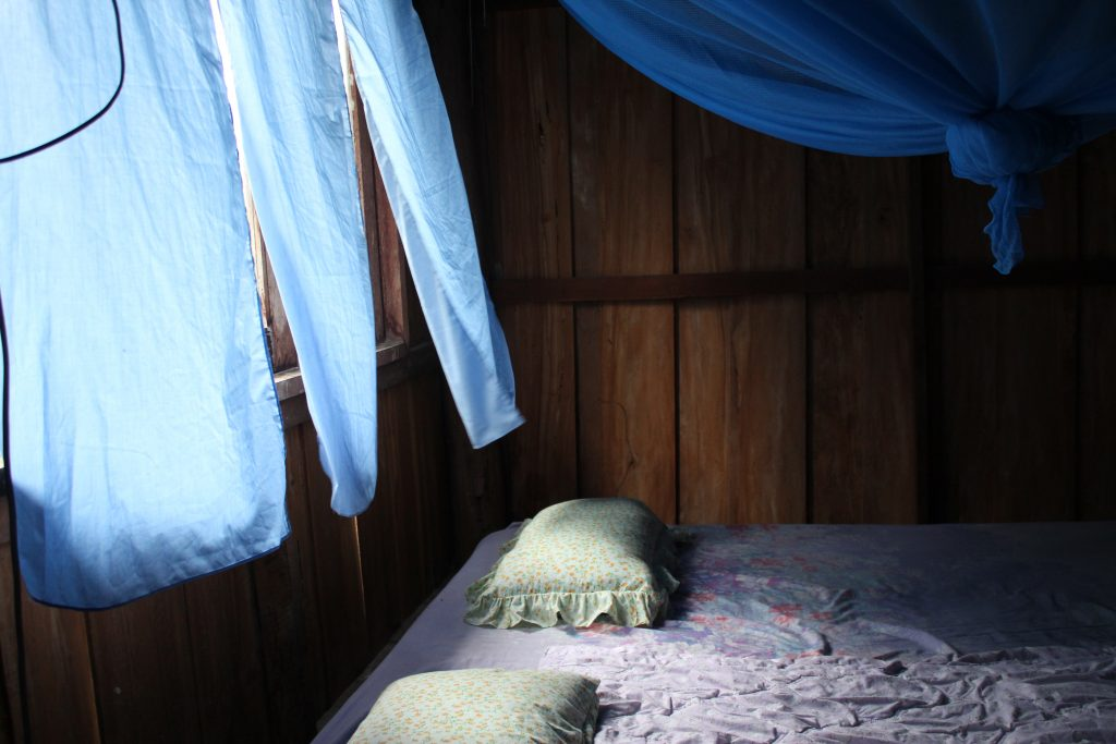 My bed throughout the homestay- hard as a rock. Every night I would fall asleep to the noise of the peepers and toads. Every morning I would wake up to the roosters outside of the window.