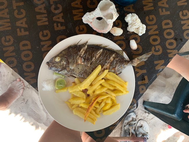 Traditional fish and chips we got to try on the island... and some shells I collected :)