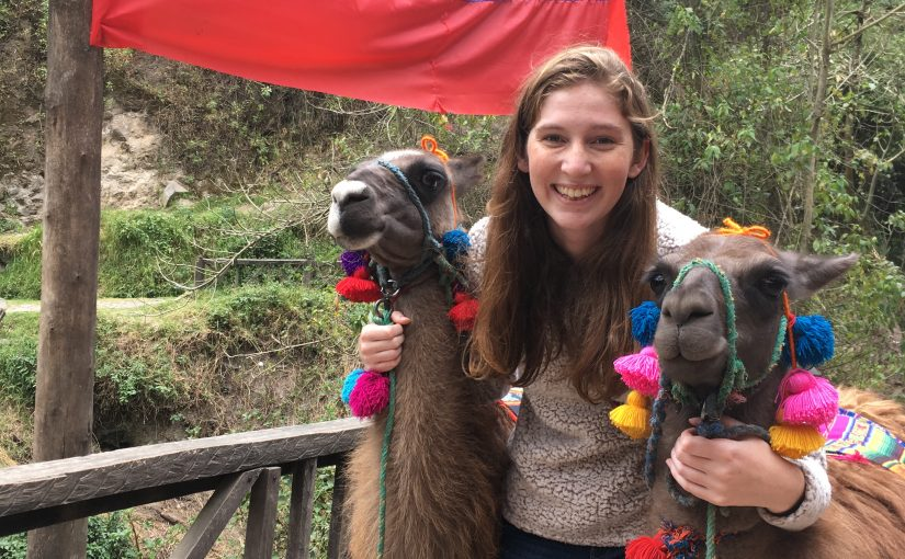 I got to live some of my dreams early in the trip and met some llamas!