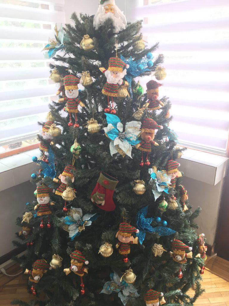 My host family's Christmas tree!