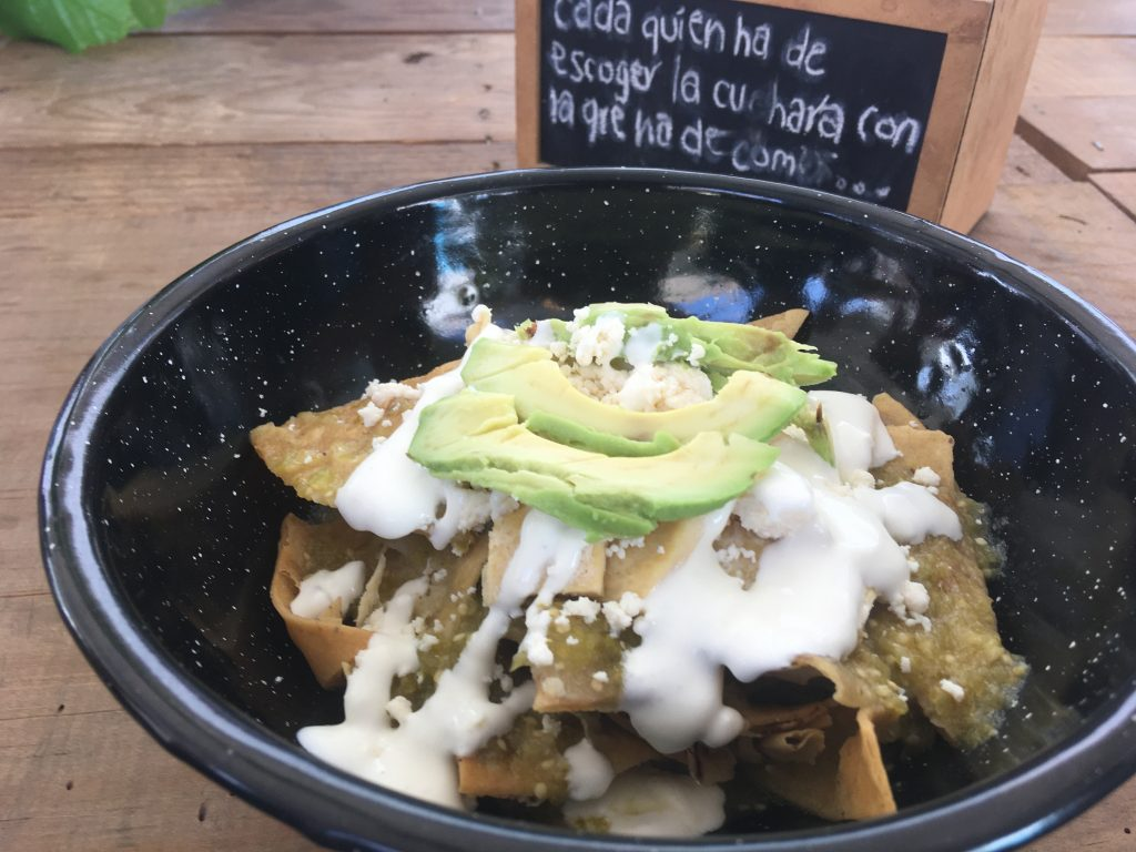 My lunch was chilaquiles with avocado!