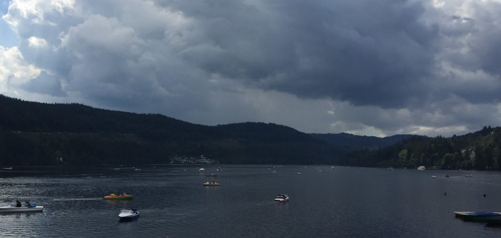 Paddle boats on Titisee.