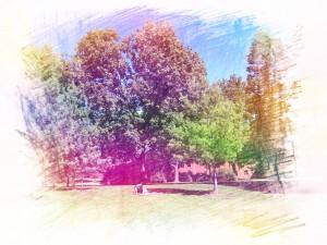 campus-large