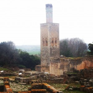 Tower in the ruins- Rabat