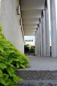 [Stairs near the VanderPlex]