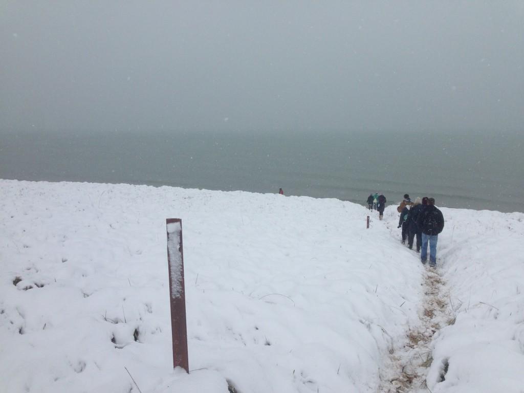 The snowy Saugatuck dunes