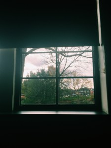 A fall view from a Lubbers classroom