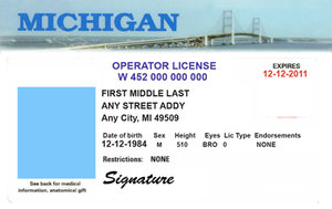 Michigan Drivers License Life In Orange And Blue