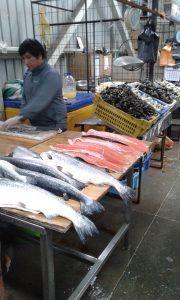 Sunday morning fresh market.