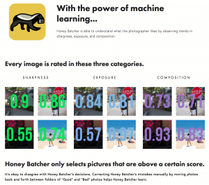 Graphic explaining how Honey Batcher software works.