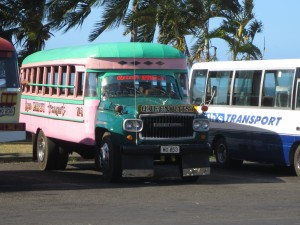 More brightly painted busses...