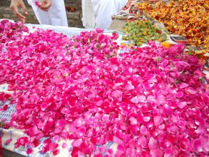 One day we went to a Buddhist religious site. There we met a tourist group from Sri Lanka. They were separating flower petals to use as an offering and let us help them.