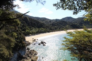 Bark Bay, Abel Tasman National Park. Golden beaches and sparking blue water? Yes, please.
