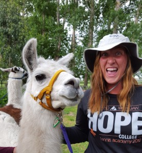 We love llamas a LOT here at the Old Convent!