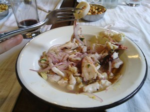 Ceviche mixto, complete with mystery fish, and what we reasoned was squid, octopus, and a mollusk.